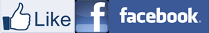 Facebook fan page button